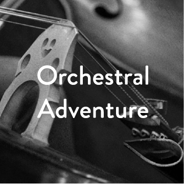 Orchestral Adventure