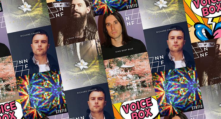 collage of album artworks