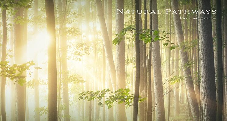 Natural Pathways Paul Mottram new release audio network