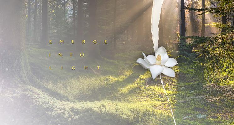 Emerge Into Light