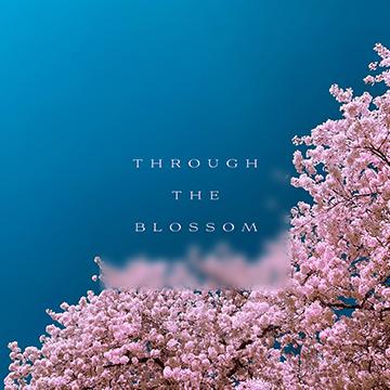 Through The Blossom